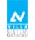 VSM-logo copy